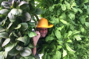 Stephen Ritz with massive Tower Gardens in Phoenix, AZ